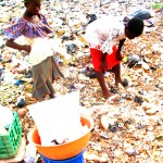 Children-on-toxic-waste-dump-looking-for-aluminium-to-re-sell-150x150